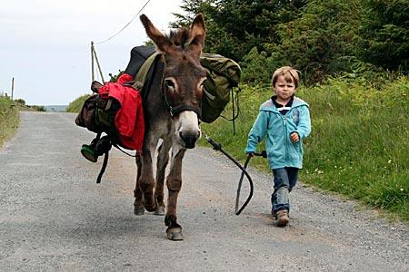 Irland - Johann mit Esel