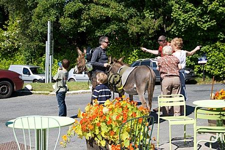 Irland - Wandern mit Esel