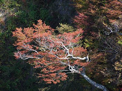 Japan Radtour Farben