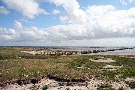 Dänemark - Mandö - Blick über das Wattenmeer