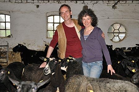 Nordsee - Tetenbüll - Schafskäserei Volquardsen