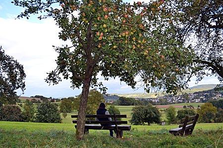 Schattenplatz: Pause unter einem Apfelbaum im Hügelland des Odenwalds