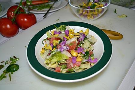 Tölzer Land - Alles so schön bunt hier: Salat mit Wildkräutern