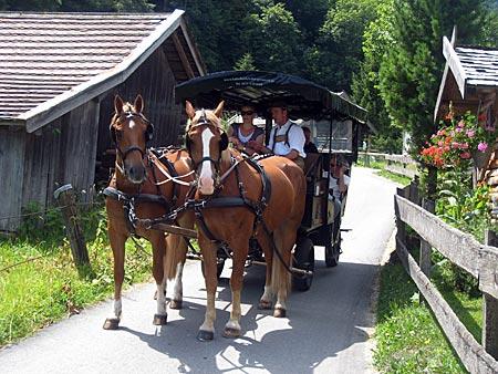 Garmisch-Partenkirchen - Kutschlehrgang