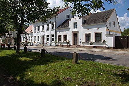 Pubus auf Rügen - Alleestraße