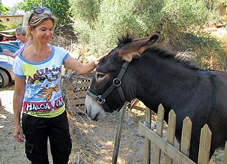 Korsika - Frédérique D'Oriano mit Esel Kixi