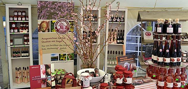 Einladung zum Mosel-Kir. Reise nach Cochem zur Blüte des Roten Weinbergpfirsichs