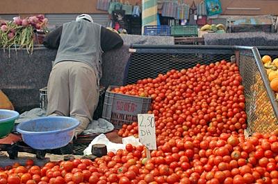 agadir und umgebung  marokko