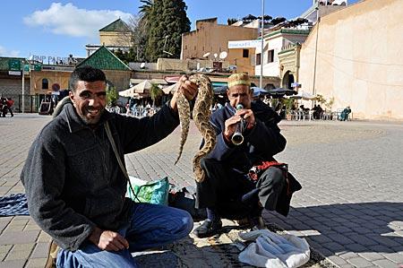 Marokko - Schlangenbeschwörer auf dem El Hedim-Platz in der Königsstadt Meknès
