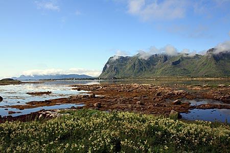Norwegen - Lofoten - Landschaft