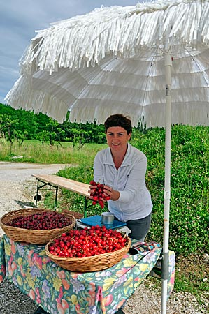 Kirschenverkauf in der Region Brda, Slowenien
