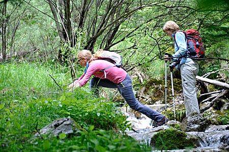 Wandern im Triglav-Nationalpark, das akrobatische Überqueren von Bächen gehört dazu. Slowenien