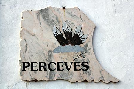 Portugal - Algarve - Perceves, seltsam anmutende Felsmuscheln, die auf Deutsch aufgrund ihrer Form auch Entenmuscheln genannt werden