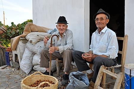 Portugal - Bewohner beim Schälen von Mandeln, Furnazinhas, Algarve