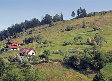 umänien - Transsilvanien - auf 1000 Metern Hoehe im Nationalpark Piatra Craiului