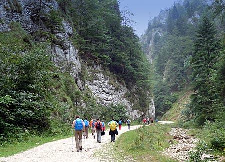 Rumänien - Transsilvanien - Wanderung durch die Zarneschter Schlucht im Nationalpark Piatra Craiului