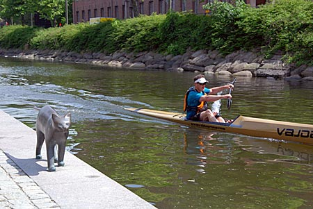 Schweden - Malmö - Katzenfiguren auf den Treppen am Kanal