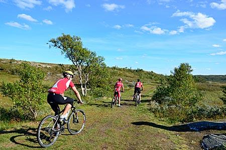 Schweden - Auch Mountain-Biker sind auf dem Olafsweg unterwegs