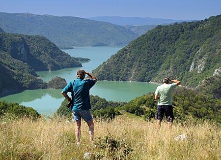 Serbien - Ausschauhalten nach Gänsegeiern am Uvac-See