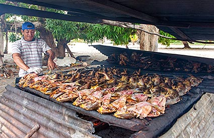 Suriname - Catfish auf dem Grill in Christiaanskondre