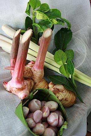 Thailand - Phitsanulok - verschiedener Gemüse auf einem Bauernhof