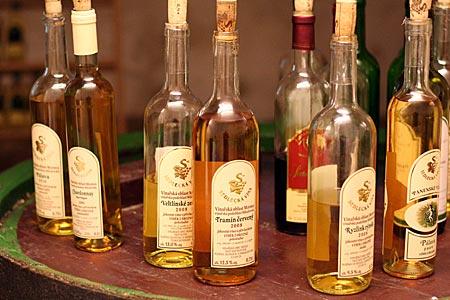 Tschechien - Südmähren - Weinprobe