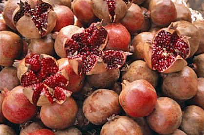 Gemeinsame Granatäpfel in Kemer in der Türkei @IV_28