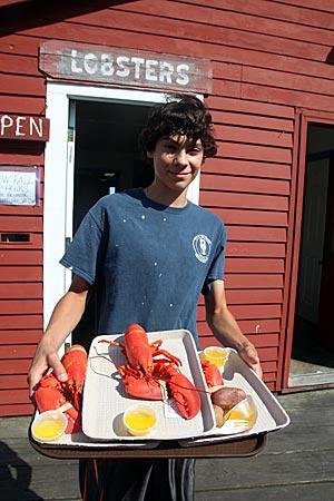 USA - Maine - Hummerfang